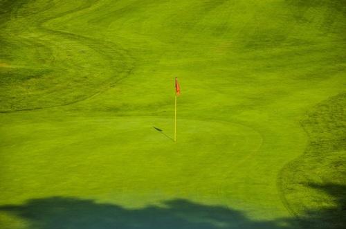 Grönt och skönt på golfbanor